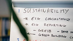 Sustainability Consultancy Video